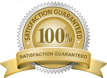 Level Data Seal of Guaranteed Satisfaction