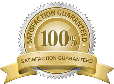 Level Data Seal of Guaranteed Satisfaction